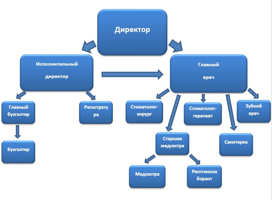 Организационная структура ООО Дантист